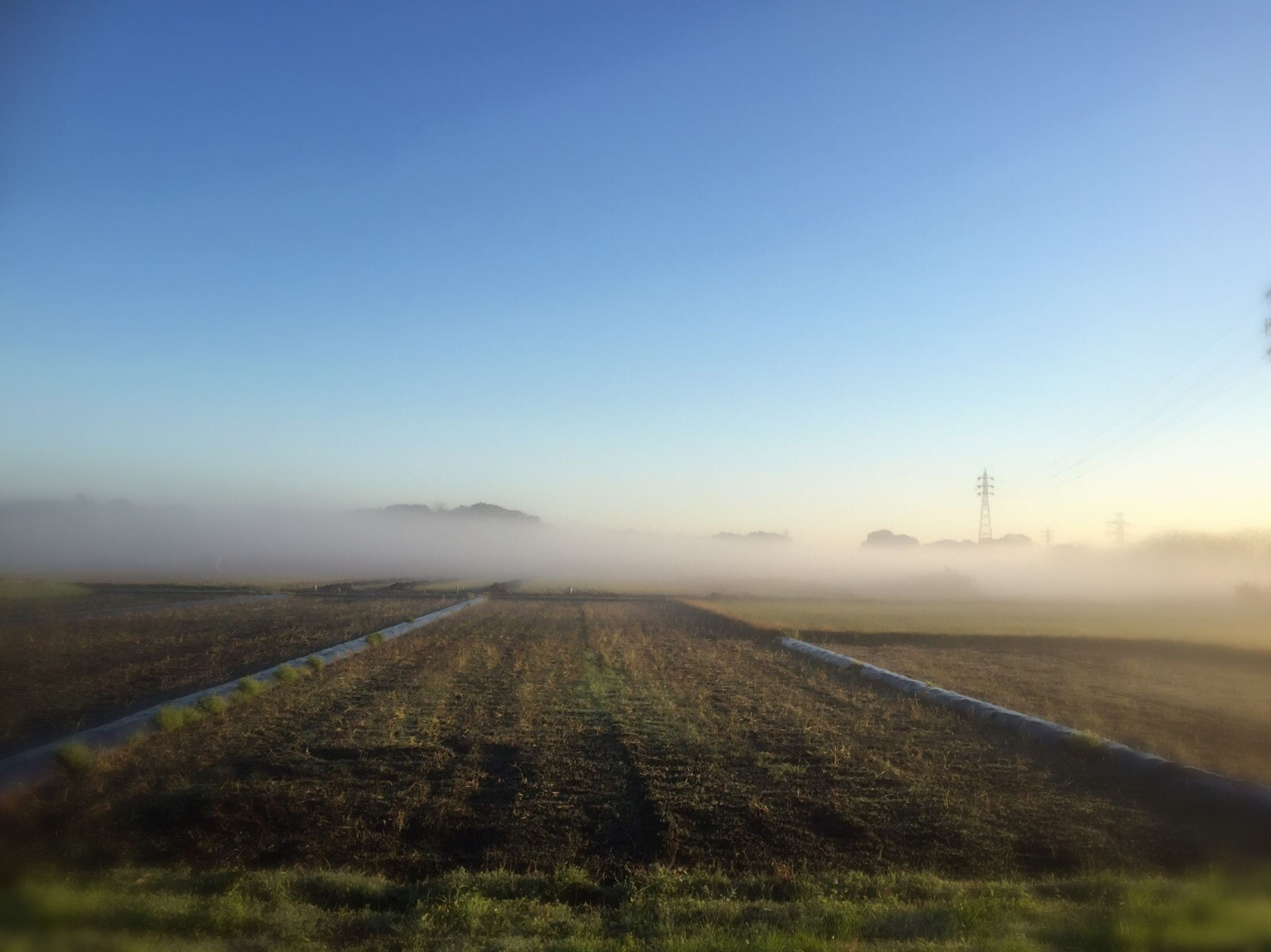 landscape, fog, field, tranquil scene, foggy, tranquility, copy space, road, scenics, nature, transportation, sky, beauty in nature, grass, non-urban scene, country road, outdoors, weather, no people