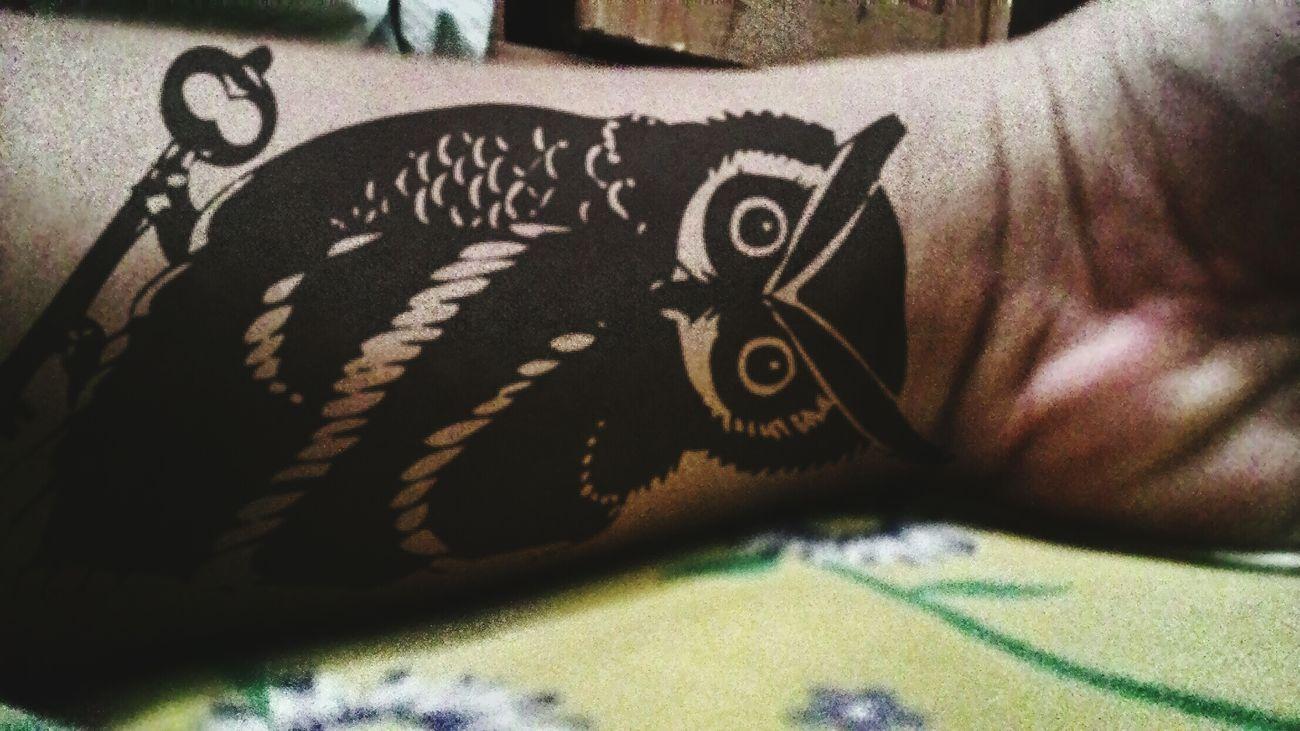 The OWL..