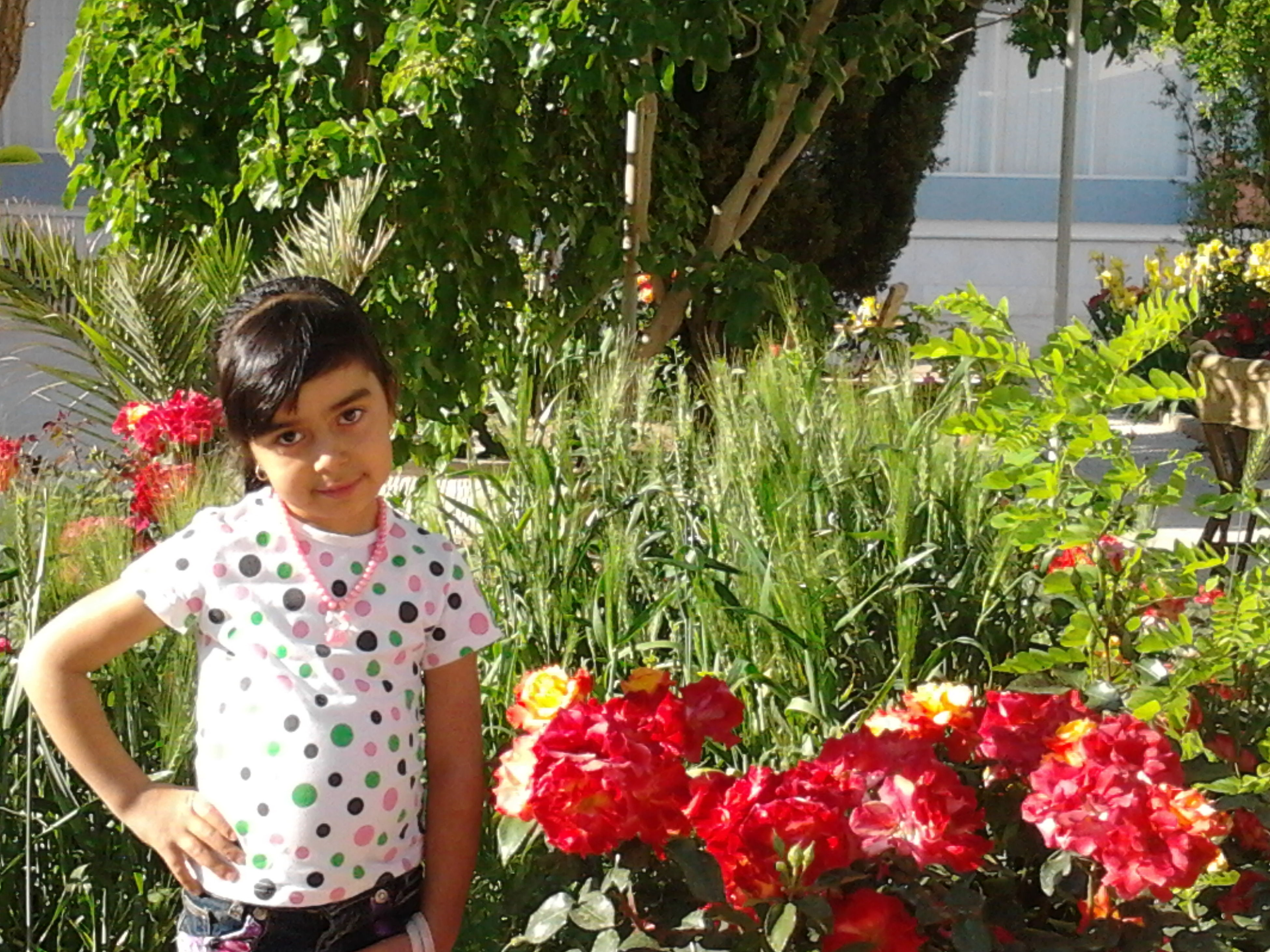 person, lifestyles, leisure activity, childhood, casual clothing, elementary age, smiling, girls, looking at camera, innocence, standing, cute, happiness, flower, portrait, three quarter length, plant, park - man made space