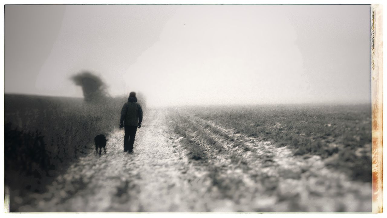 Man and dog Misty Winter Afternoon Dog Walker Gloomy Day Eerie Meloncholy