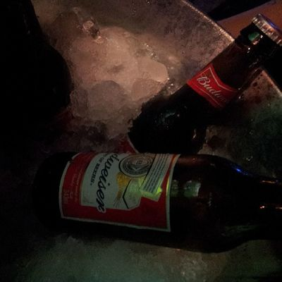Budweiser Cerveja Beer Night nightout hangar51