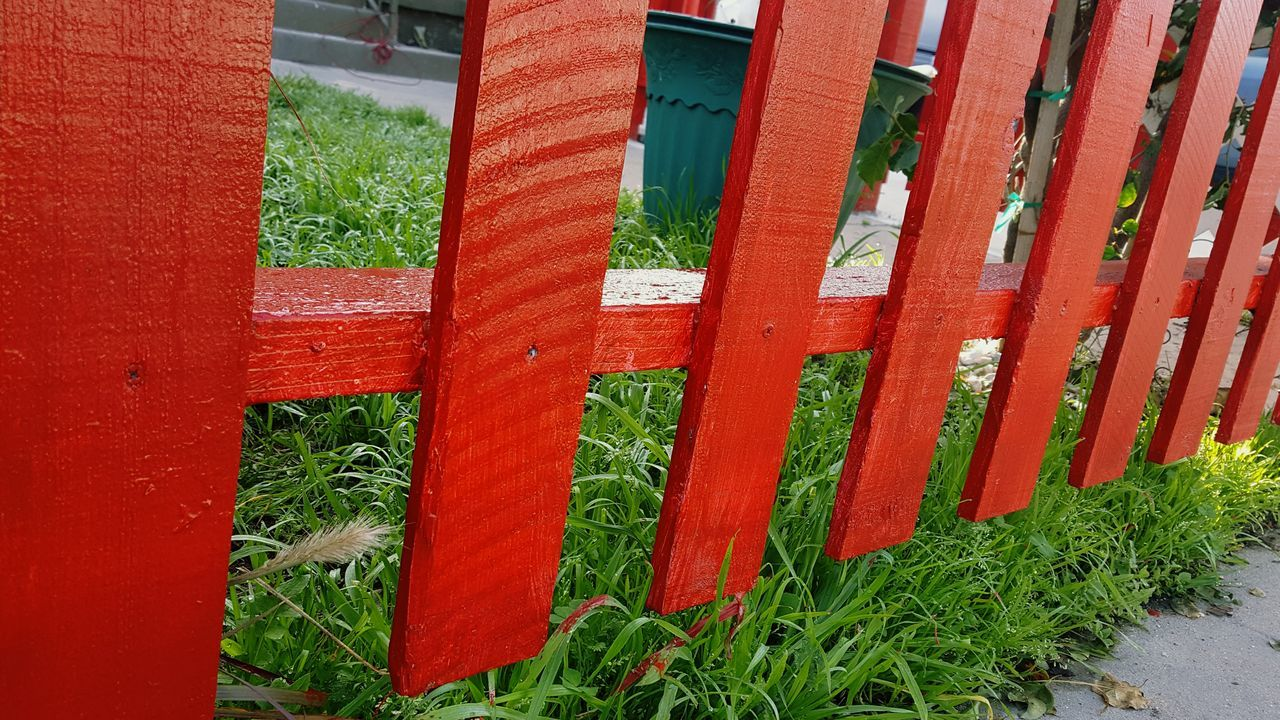 Red Green Color No People Grass Day Outdoors Growth Architecture Nature Greengrass Contrast Redfence Urban Landscape Full Frame Natural Lightning Color Photography No Filter Nature Close-up Off The Beaten Path Painted Wood Paint Paint Droplets Beauty In Nature Offthebeatenpath The City Light