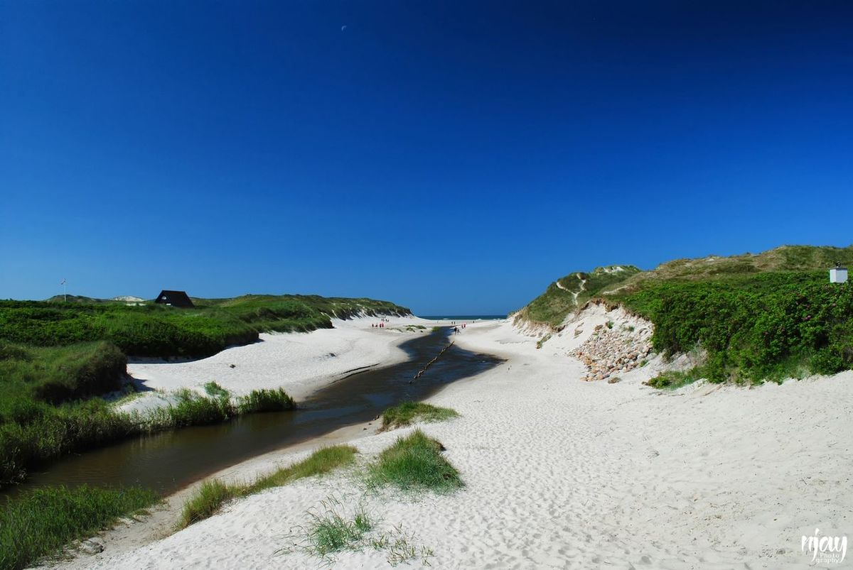 Northsea Clear Sky Scenics Landscape Sand Summer Sunny Blue Beach Sand Dune River Riverscape River View Landscape_Collection Stream Stream - Flowing Water Seascape Sea Denmark Denmark 🇩🇰 Henne Strand Nature Nature_collection Contrasting Colors Vacations