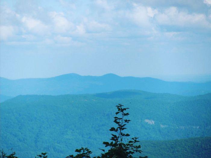 Blue Ridge Parkway in North Carolina. First Eyeem Photo