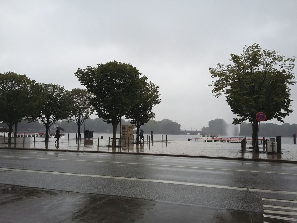 Rain. · Hamburg Germany 040 Alster Binnenalster Rain☔ Rainy Day Trees Wet Tristesse Gray Gray Day Gray Sky