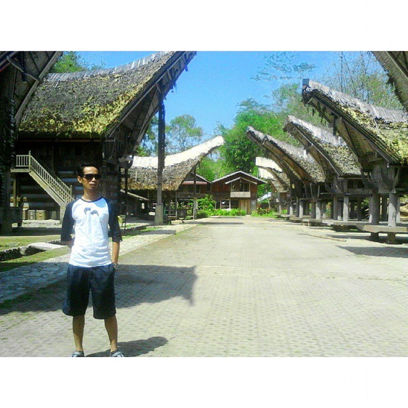 Tongkonan KeteKesu NorthToraja INDONESIA