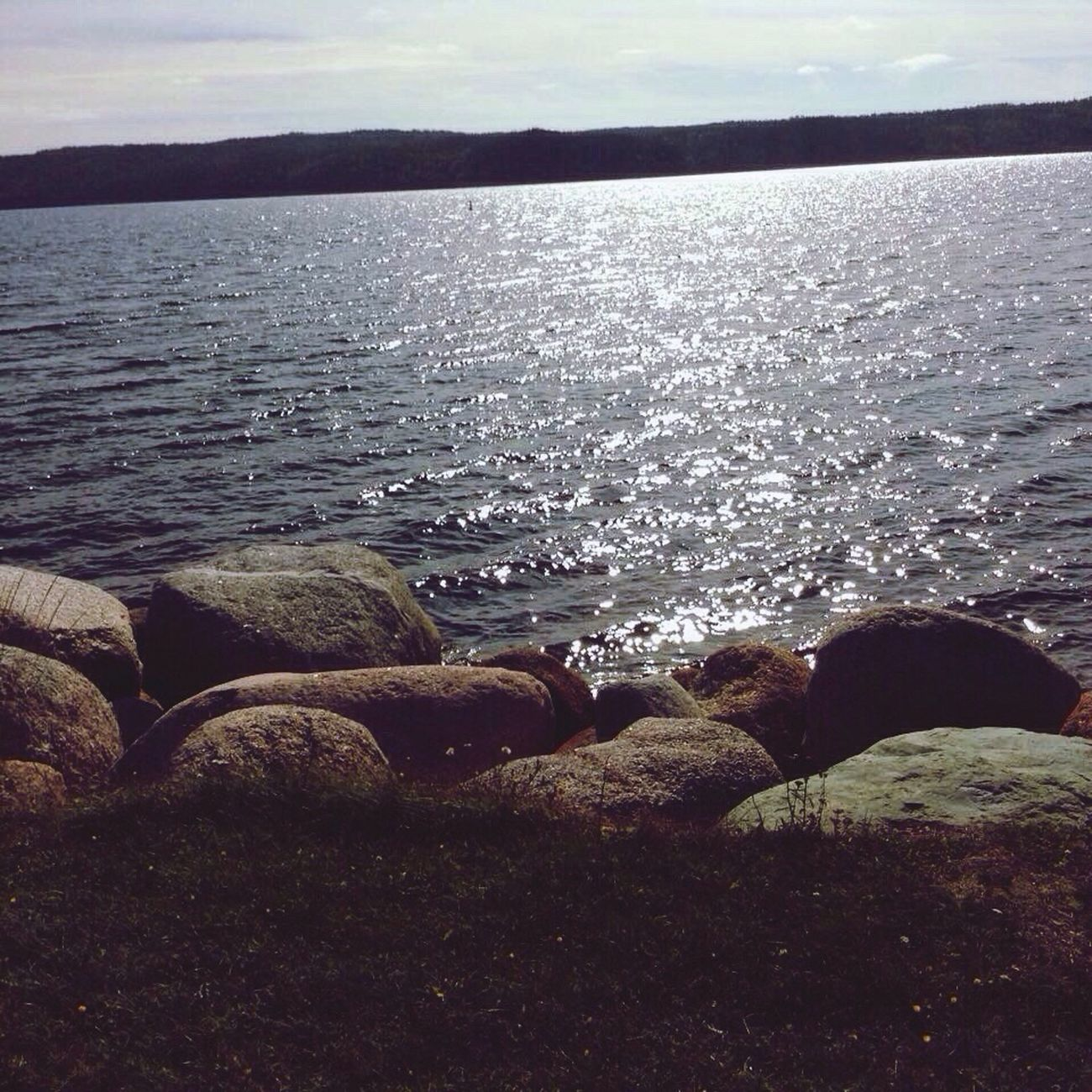 Check This Out First Eyeem Photo Taking Photos NFLD
