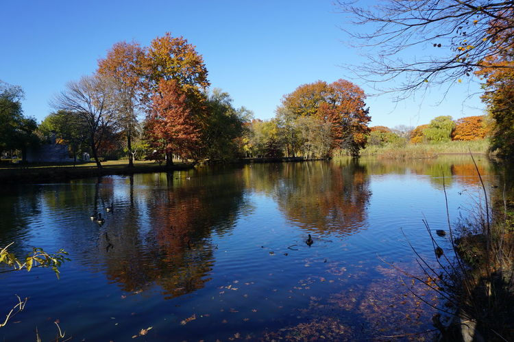 Outdoors Photograpghy  Water Reflection Sky Colorful Trees
