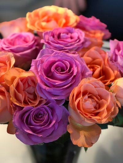 Flower Rose - Flower Flower Head Freshness Bouquet No People Indoors  Florist Pink Color
