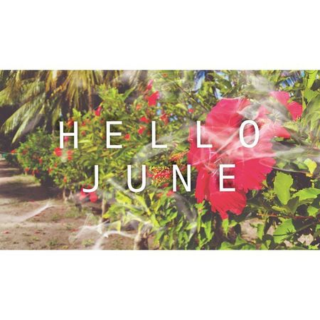 June Instamood Winks Kaadedhdhoo kdm airport mothernature flower landscape red
