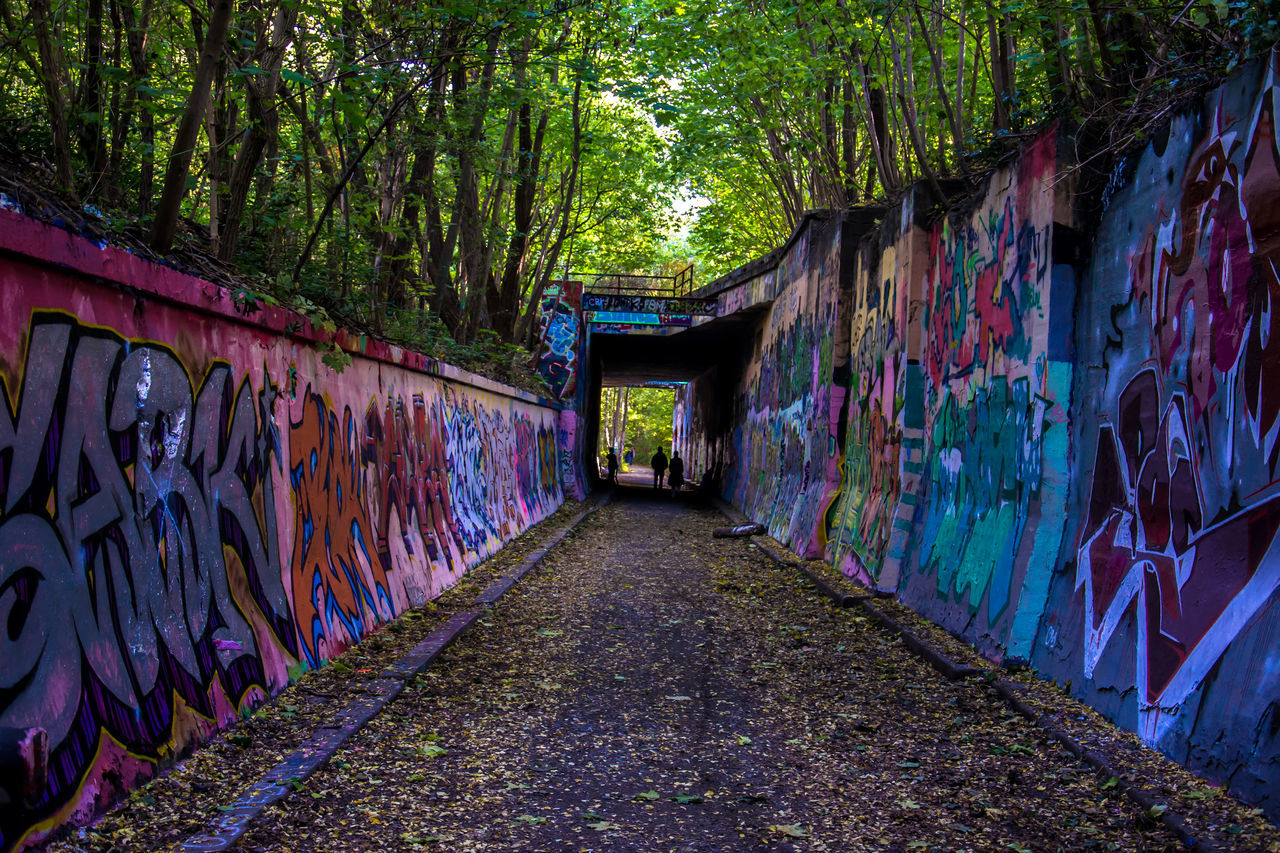 Architecture Beauty In Nature Berlin Built Structure Cultures Day EyeEm Best Shots Graffiti Green Color Ivy Multi Colored Nature Naturpark Südgelände No People Outdoors The Way Forward Tree