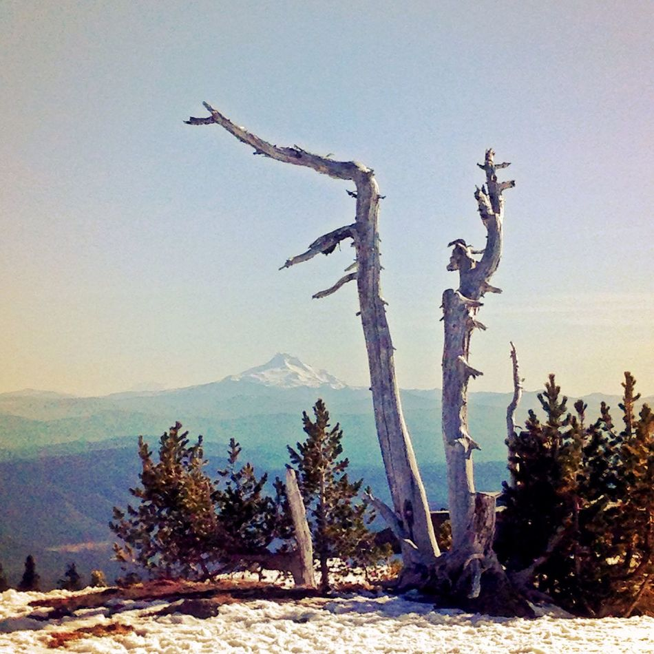 Mt.Jefferson Cascades Walking Around Soaking Up The Sun
