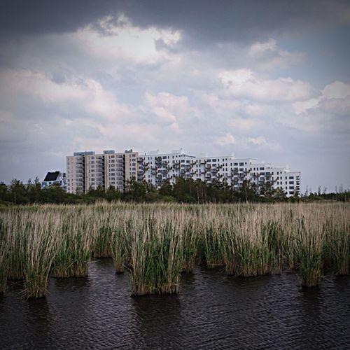 Storm is coming... EEA3 - Copenhagen EEA3 EyeEm Global Meetup Open Edit Copenhagen EyeEm Best Shots AMPt_community