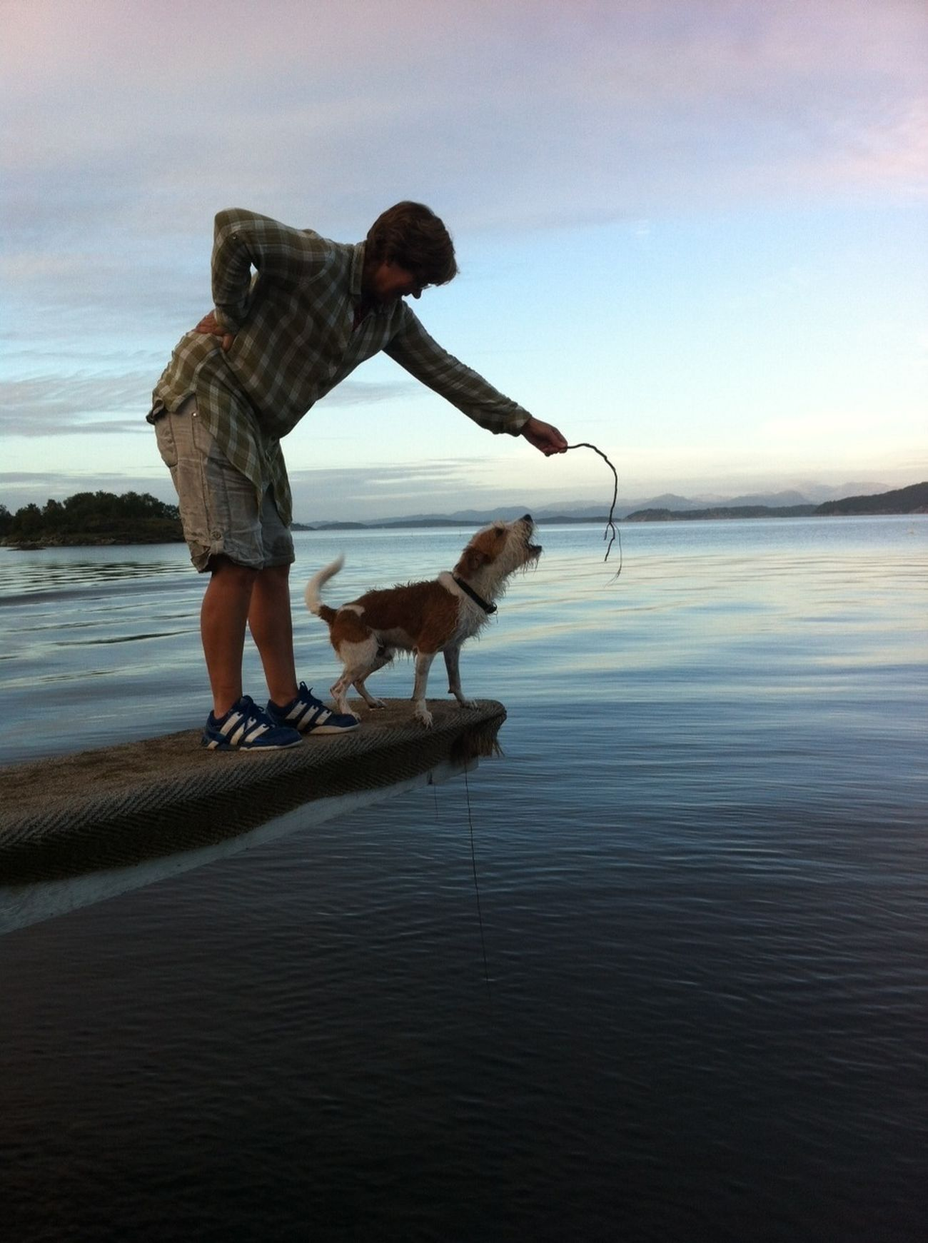 trying to make the Dog Jump into the Sea . Water_collection Sky And Sea