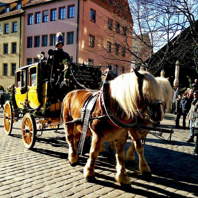 Horse Carriage Horse Photography  Horse <3 Horse Carriage Wheels Horsepower Nuremberg