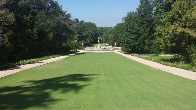 Garden Jardines Del Campo Del Moro, Madrid, Spain Outdoors Palacio Real, Madrid, Spain Relaxing Moments Tranquility Tree Visiting