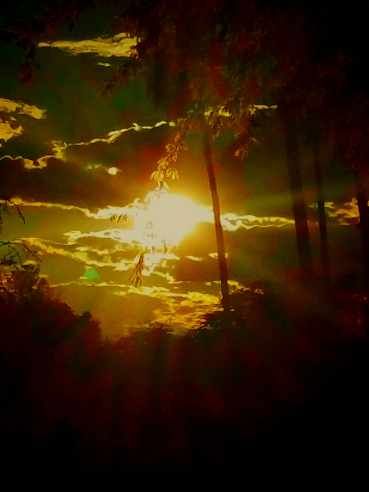 Nature Beauty In Nature Silhouette Tree Landscape Sunbeam Arizonasky Enjoy The View Blessed & Thankful :) Dramatic Sky Look Up And Thrive Beauty In Ordinary Things Blessings Love Nature Sundown Peaceful Evening Unforgettablemoments Beautiful Sky