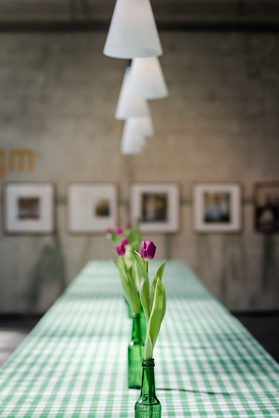 Tulips in an art gallery ArtWork Blossom Compositions Exhibition Flower Flower Head Gallery Glass Green Lamp Photo Exhibition Pictures Plant Tabel Cloth Table Tulip Vase Vernissage Violet Everything In Its Place