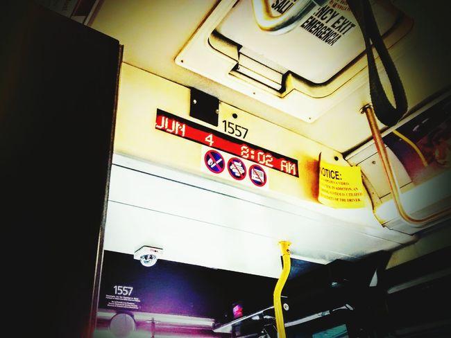 City Bus City Bus