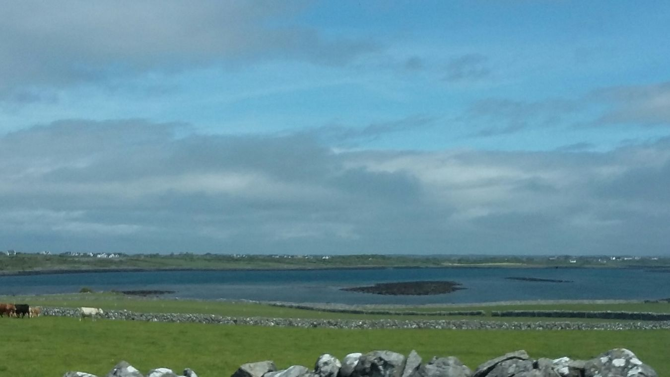 Ireland🍀 Irish Landscape By The Ocean Green And Blue No Filter EyeEm Nature Lover Nature_collection Nature_collection EyeEm Gallery