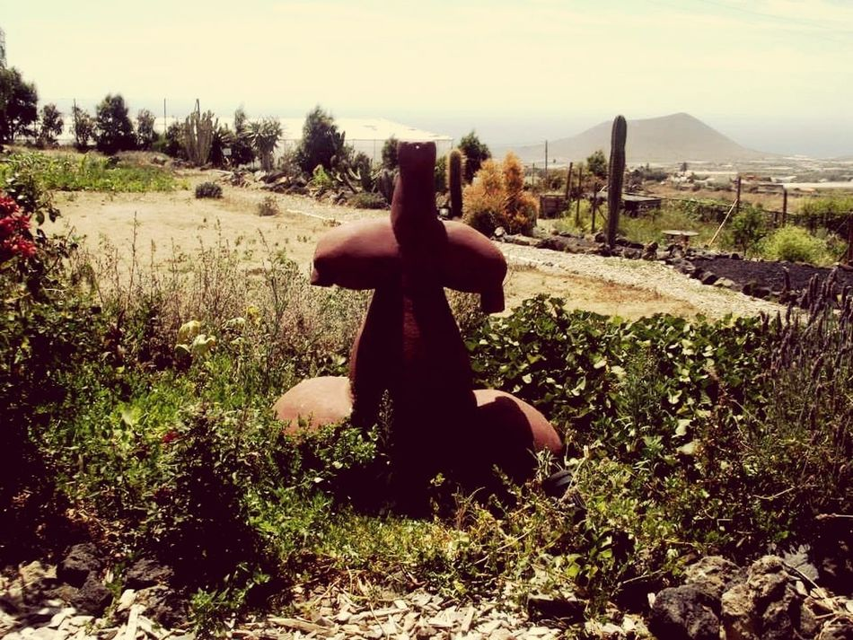 Tara. Sculpture Deity Mountains Teide Volcano Mountains And Sky Outdoors Beauty In Nature Retreat Nature Flower