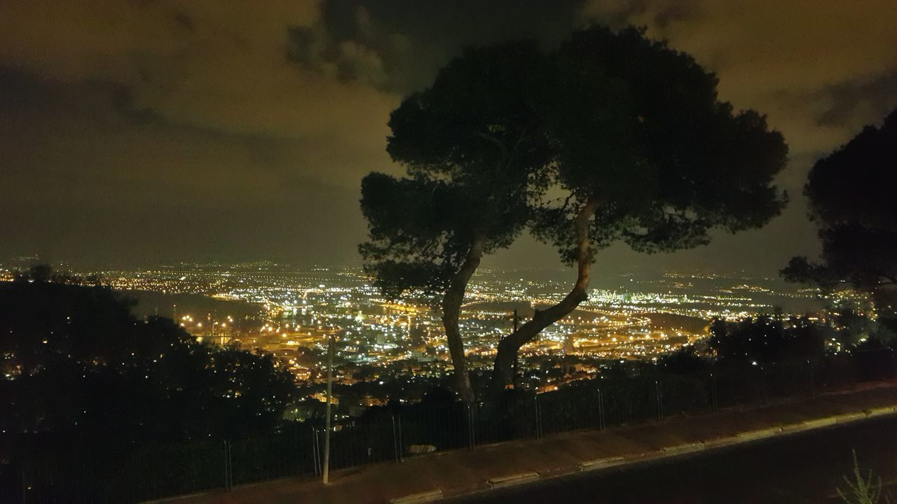 Silhouette Trees By Illuminated City Against Sky At Night