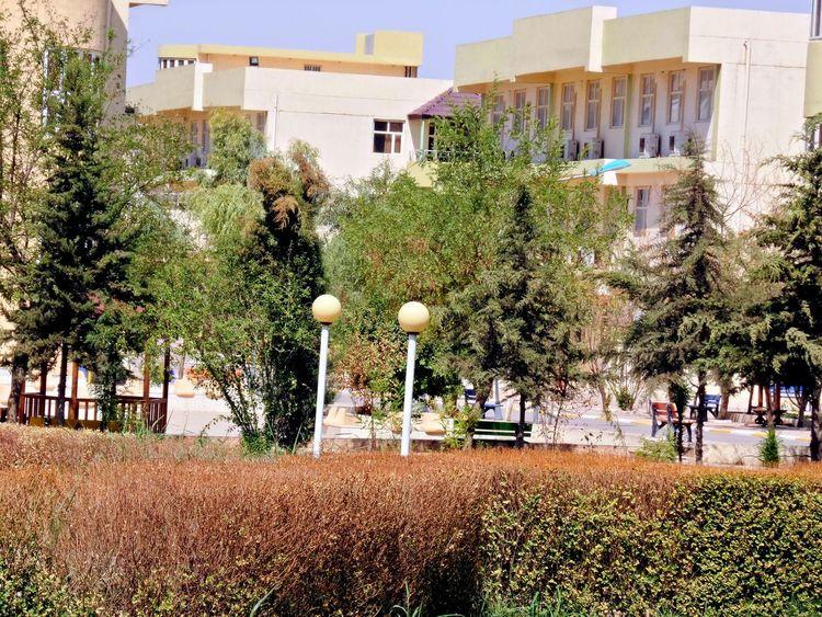 ♥Iraq♥ Iraq Erbil Erbil Cihan University At University At Work Hello World ✌ Color Portrait Popular Photos Photography