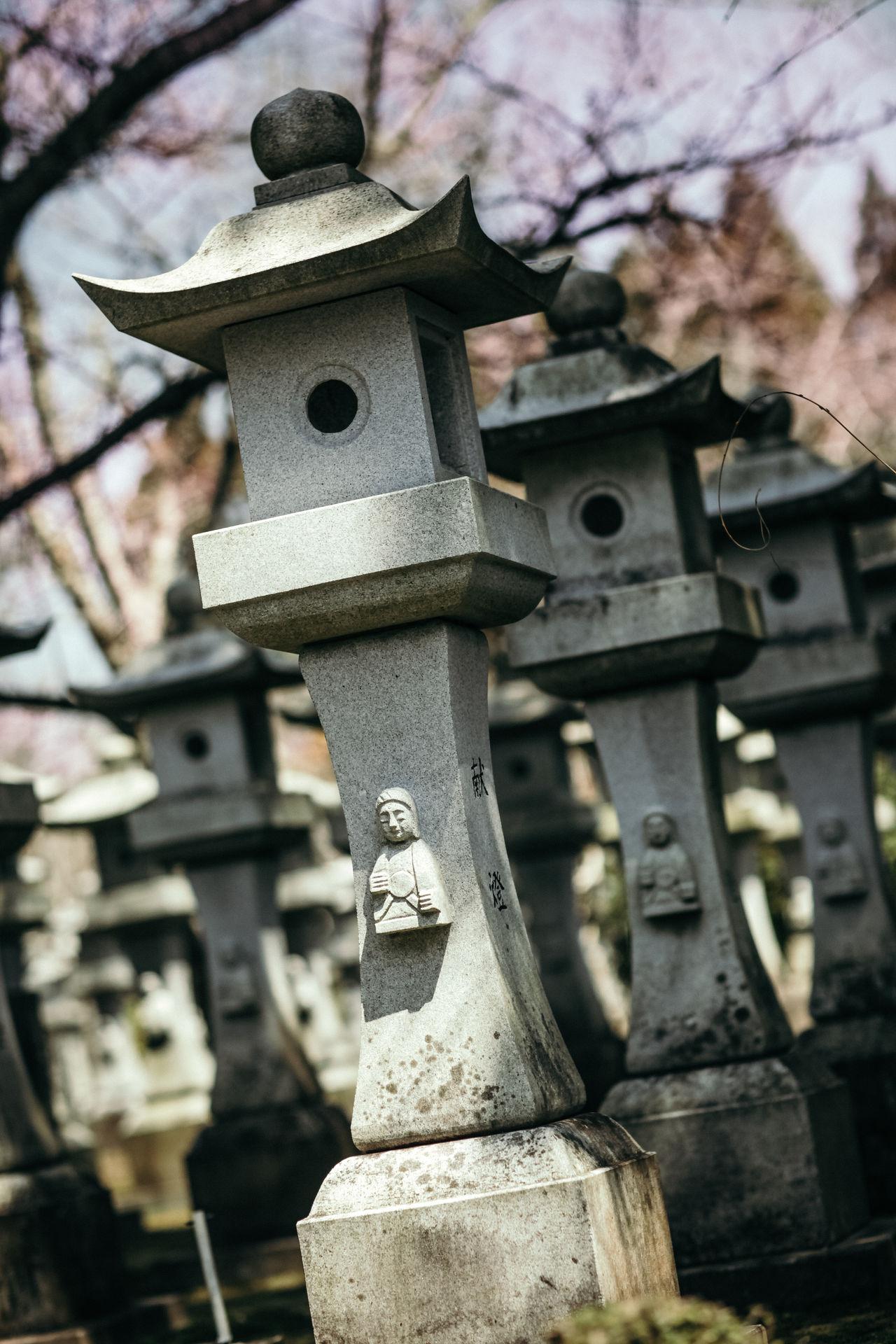 Day Japan Japan Photography Kamikaze Lantern Outdoors Sakura Sakura Blossom Spring Summer World War 2 Memorial