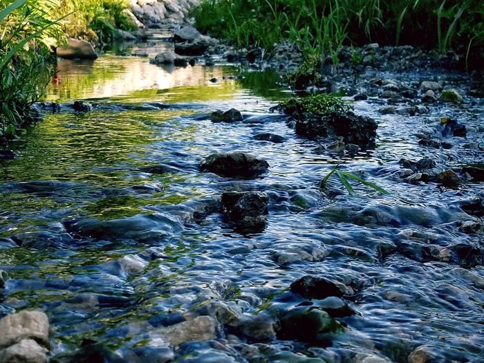 Celabrate summer by cooling off in the stream😌 Water Outdoors Girl Boss Stream Relaxing No People Beauty In Nature Summer Tranquility Nature River Day Tree The Great Outdoors - 2017 EyeEm Awards