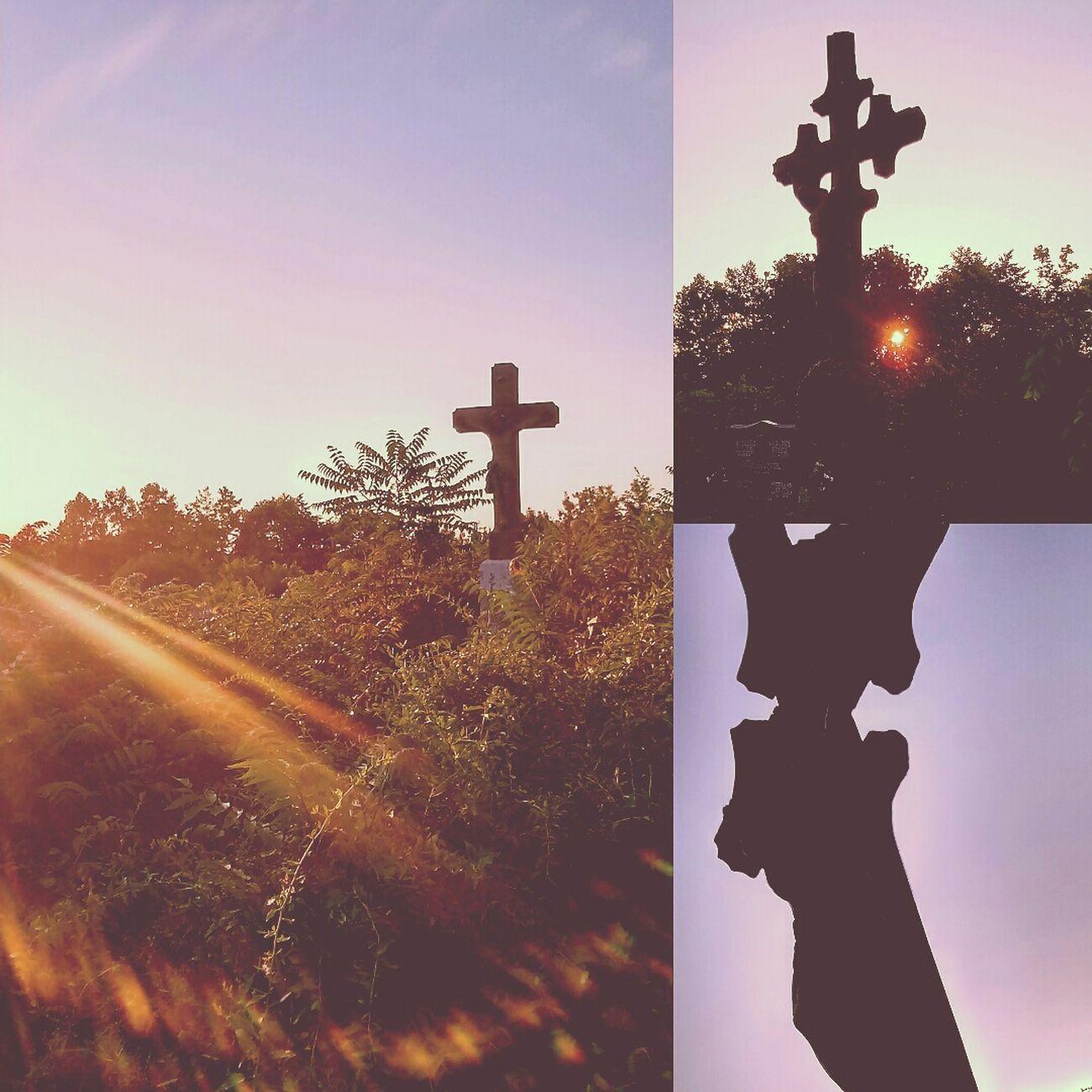 Cementery Temető Vajdaság Serbia Srbija Szerbia Cross Kereszt