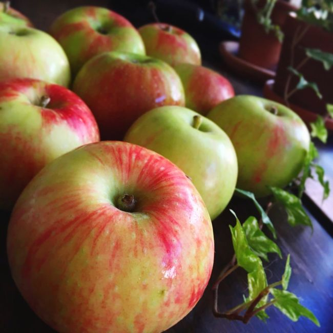 Fresh, local apples Food And Drink Local Healthy Eating Close-up Apple - Fruit Apple Wisconsin Madison Food Foodphotography First Eyeem Photo