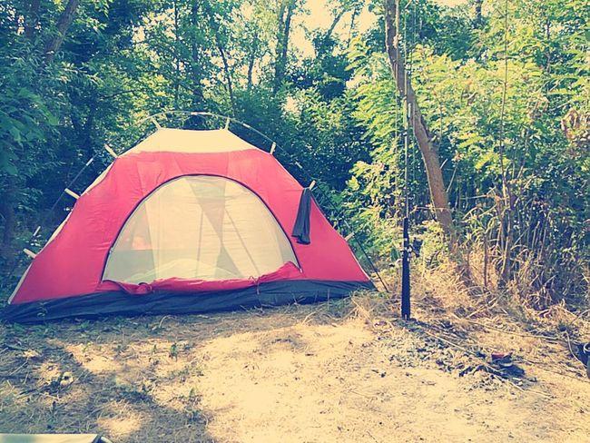 палатка отдых Природа лето Рыбалка удочка красота People World Жизнь Еда Люди река спиннинг рыба