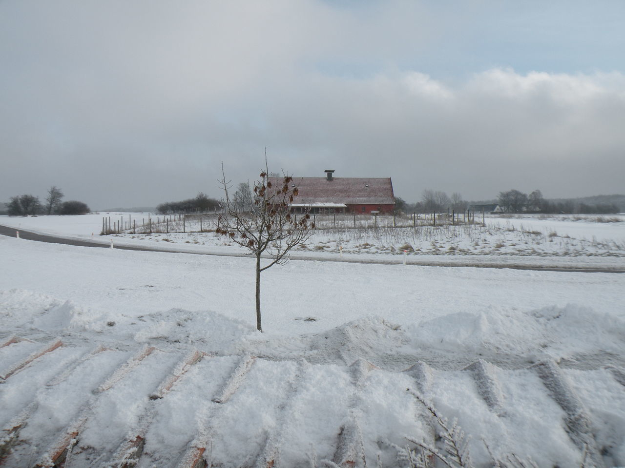 Winter Snow Cold Temperature Frozen Frost Nature Deep Snow No People Beauty In Nature Outdoors Landscape Day - in the Danish Countryside