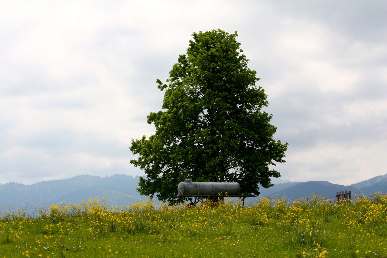 From My Point Of View Landscape_photography Meadow Huggingatree