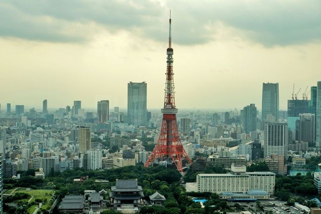 Tokyo Tower 増上寺 東京タワー Landscape Landscape_Collection TV Tower Steel Tower