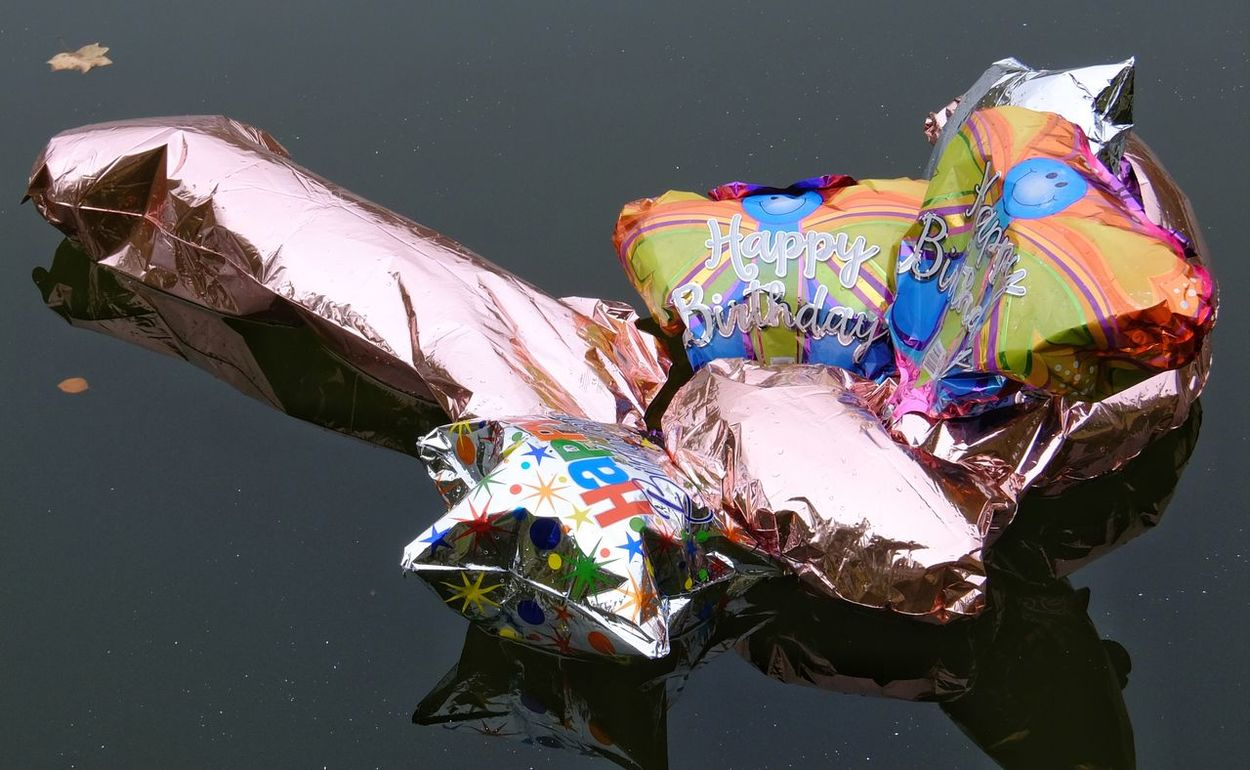So much for that. Water Multi Colored Mylar Balloons Day Outdoors Reflection Light And Shadow Close-up Photography
