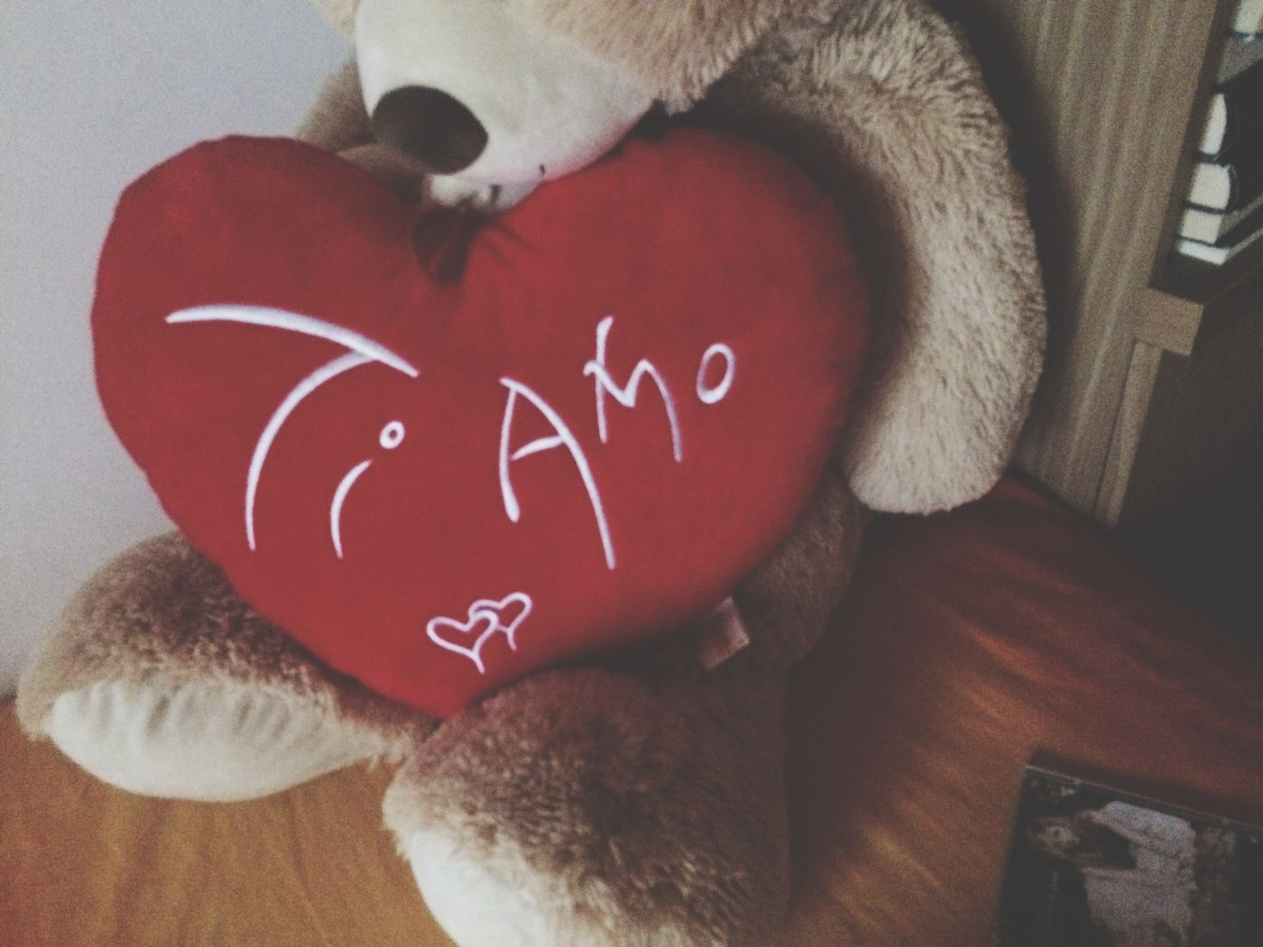 Love Lovely Lovely Toy I Love You ! Cuore Orsacchiotto Red Heart Teddy Bear Bearcub Real Love