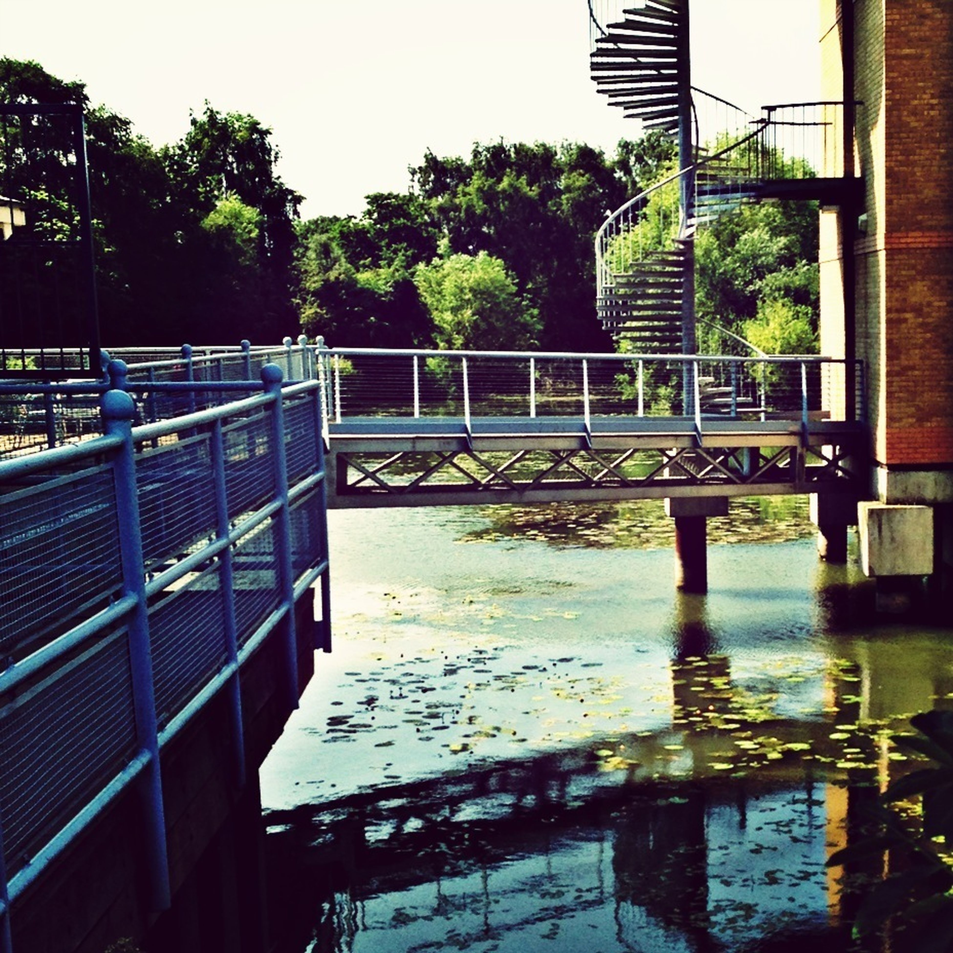 built structure, water, architecture, tree, reflection, railing, connection, building exterior, river, bridge - man made structure, footbridge, day, lake, outdoors, no people, plant, growth, waterfront, bridge, metal