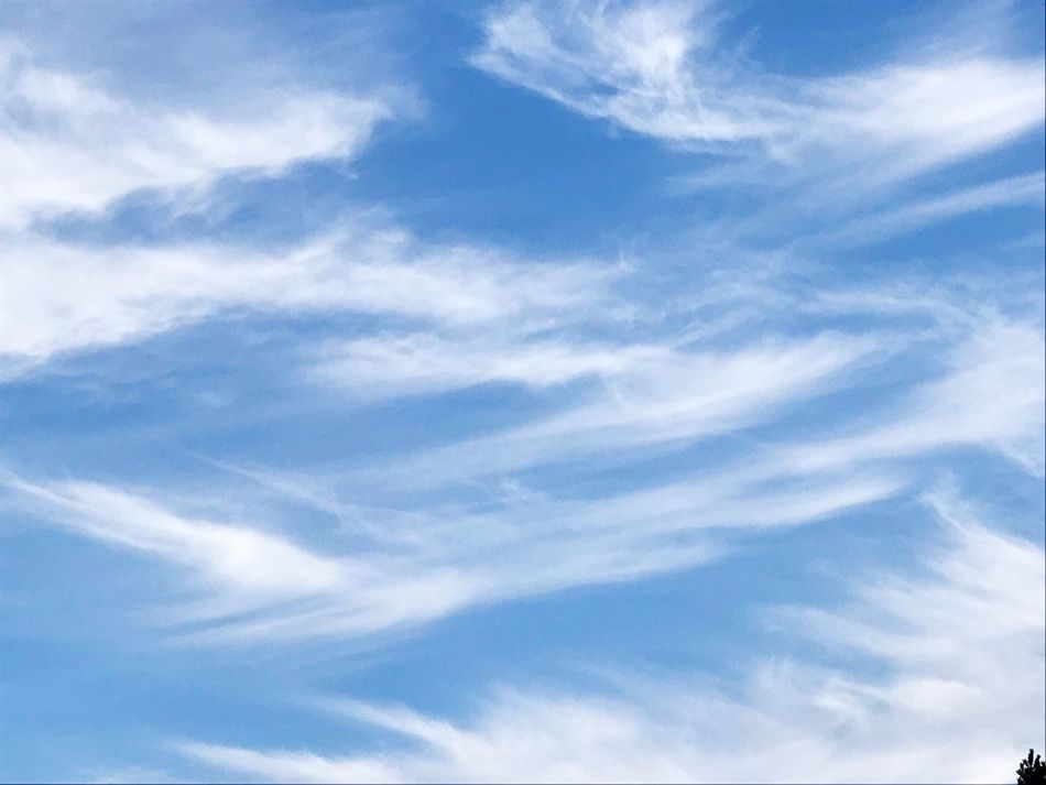 Sky Blue Low Angle View Cloud - Sky Beauty In Nature Nature Backgrounds Sky Only Scenics Day Full Frame No People Tranquility Outdoors Tranquil Scene