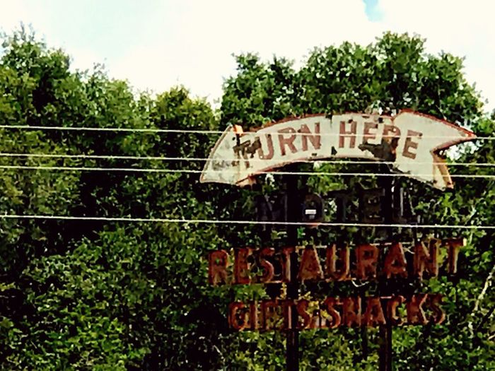 """Old restaurant, motel, and snack shop sign. """"Turn here."""" I did. It was frightening! Text Sign Directions Old Sign Decay Communication Trees No People Day Outdoors Sky Motel Sign Restaurant Sign Gift Shop Sign Snacks Sign Ruins Tourist Stop"""