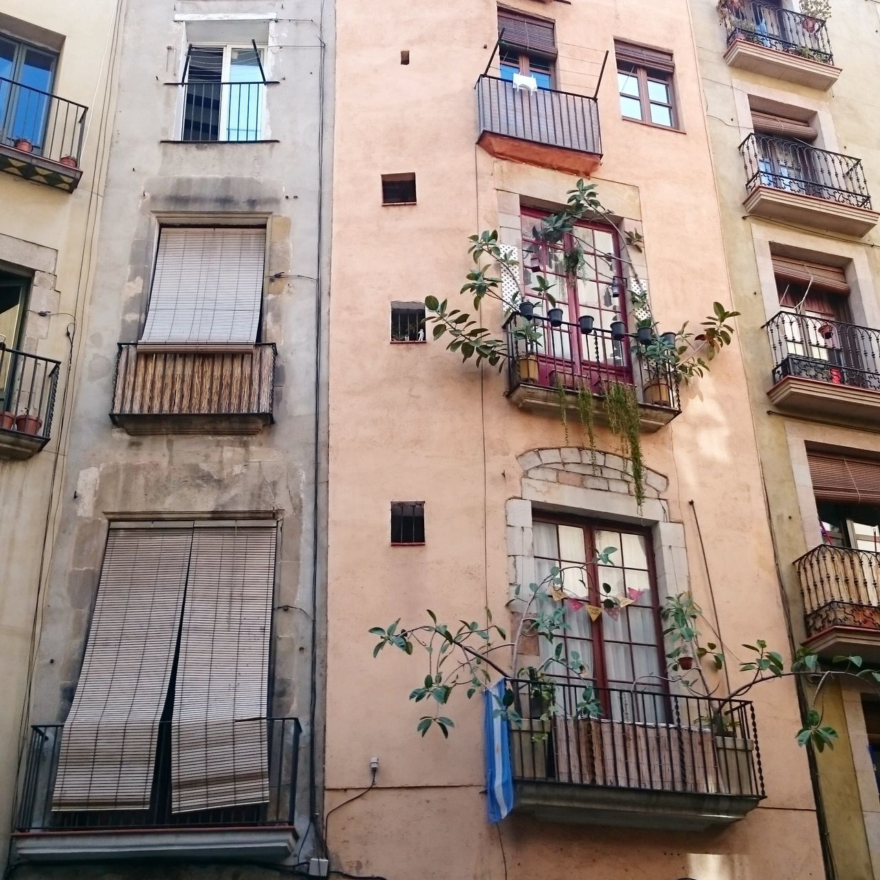 architecture, building exterior, window, balcony, built structure, low angle view, residential building, no people, day, outdoors, window box