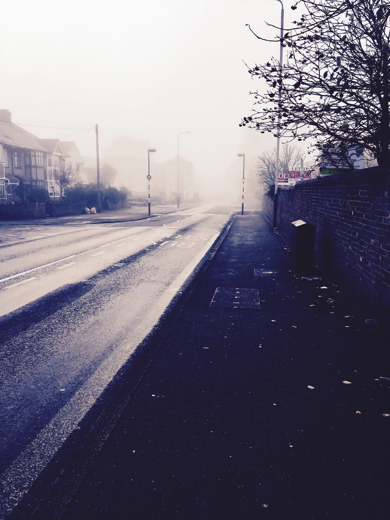 The streets of London will always be foggy Early Morning Busstop Foggy Morning Darkness Invisible No People Only You