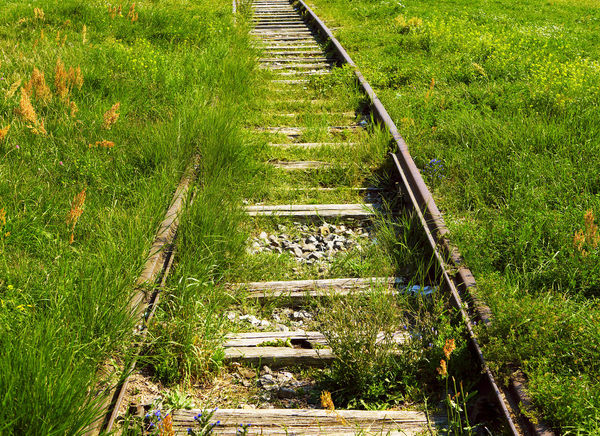 Overgrown railway tracks Abandoned Beauty In Nature Day Environment Field Grass Green Color Growth High Angle View Nature Nature Strikes Back No People Outdoors Overgrown Plant Rails Railway Track Scenics Tracks Tranquility Transportation Bewildering Strassenfilm