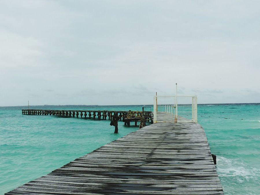 Cancun Nature Mexico