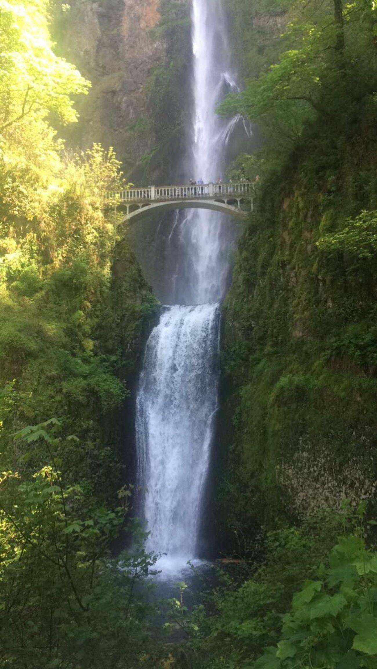 No Filter Multnomah Falls  Proud Oregonian