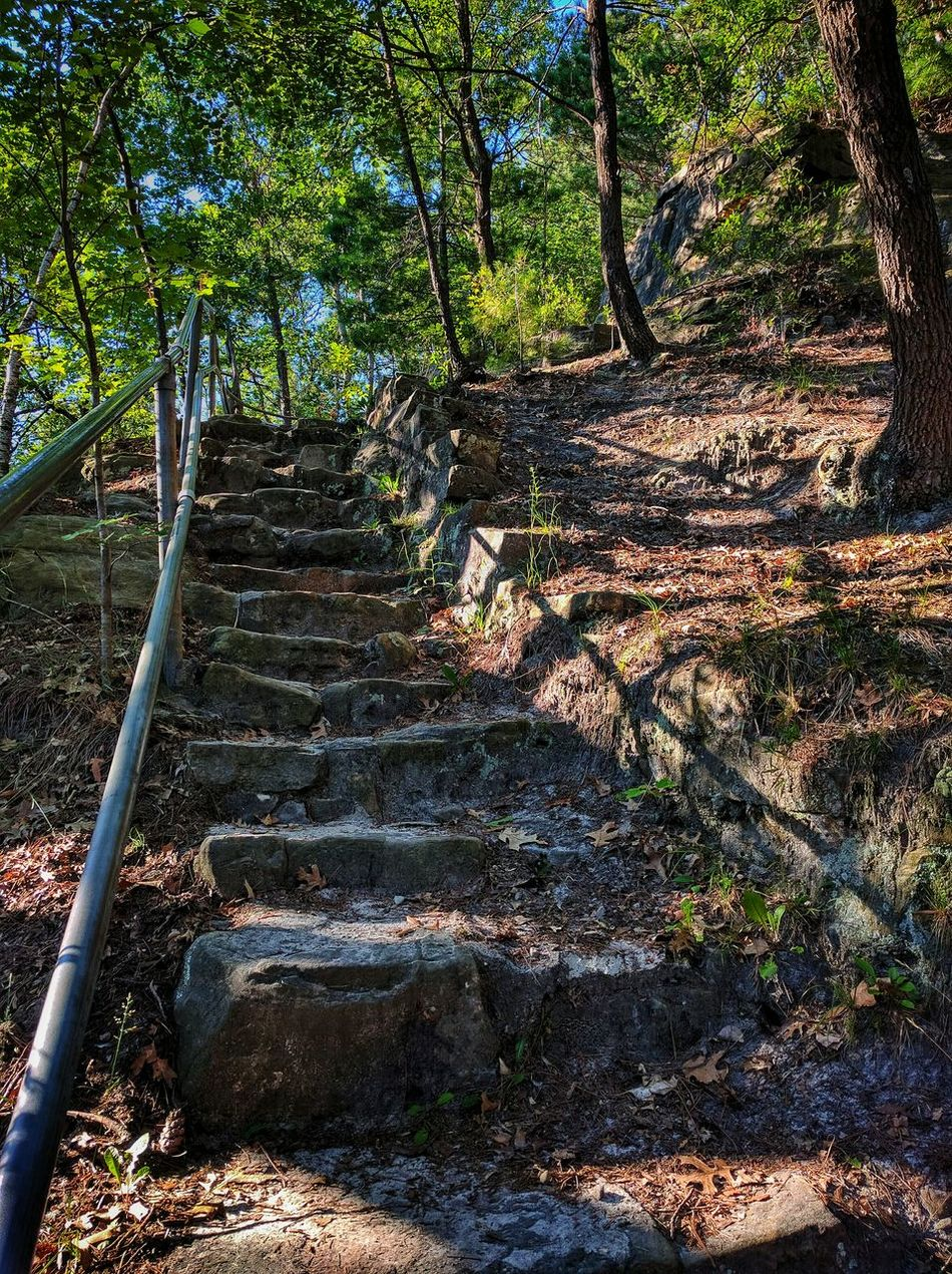 Journey to the top. Hike State Park  Wisconsin Park Woods Summer Stairs Stone Bluff Mesa