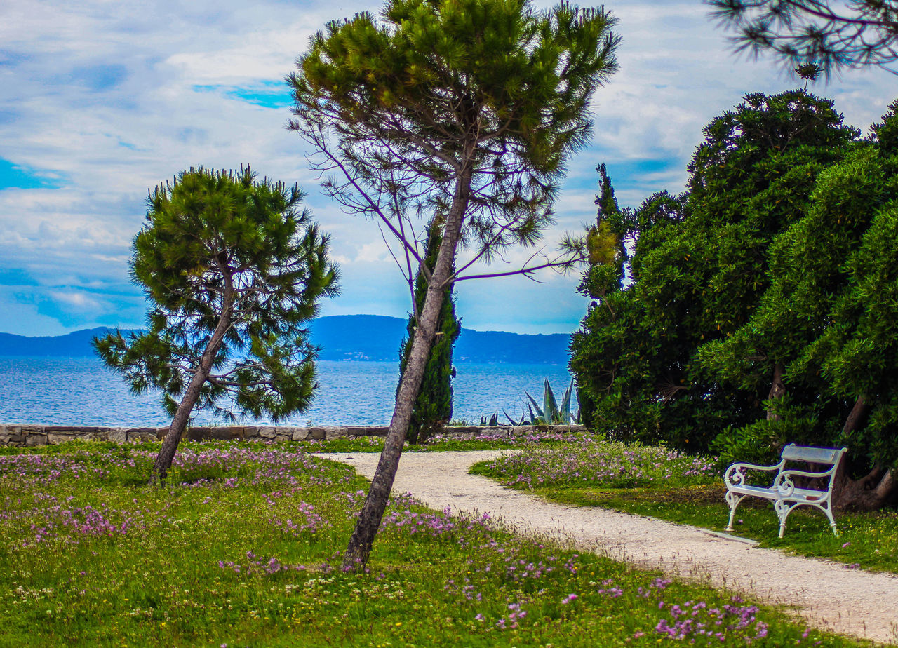 Sustipan Beautiful Bench Croatia Dalmatia Day Grass Nature Pinetrees Relaxing Scenics Sea Split Spring Spring Flowers Springtime Sustipan Tranquility Travel Destinations Traveling Travelling View Way