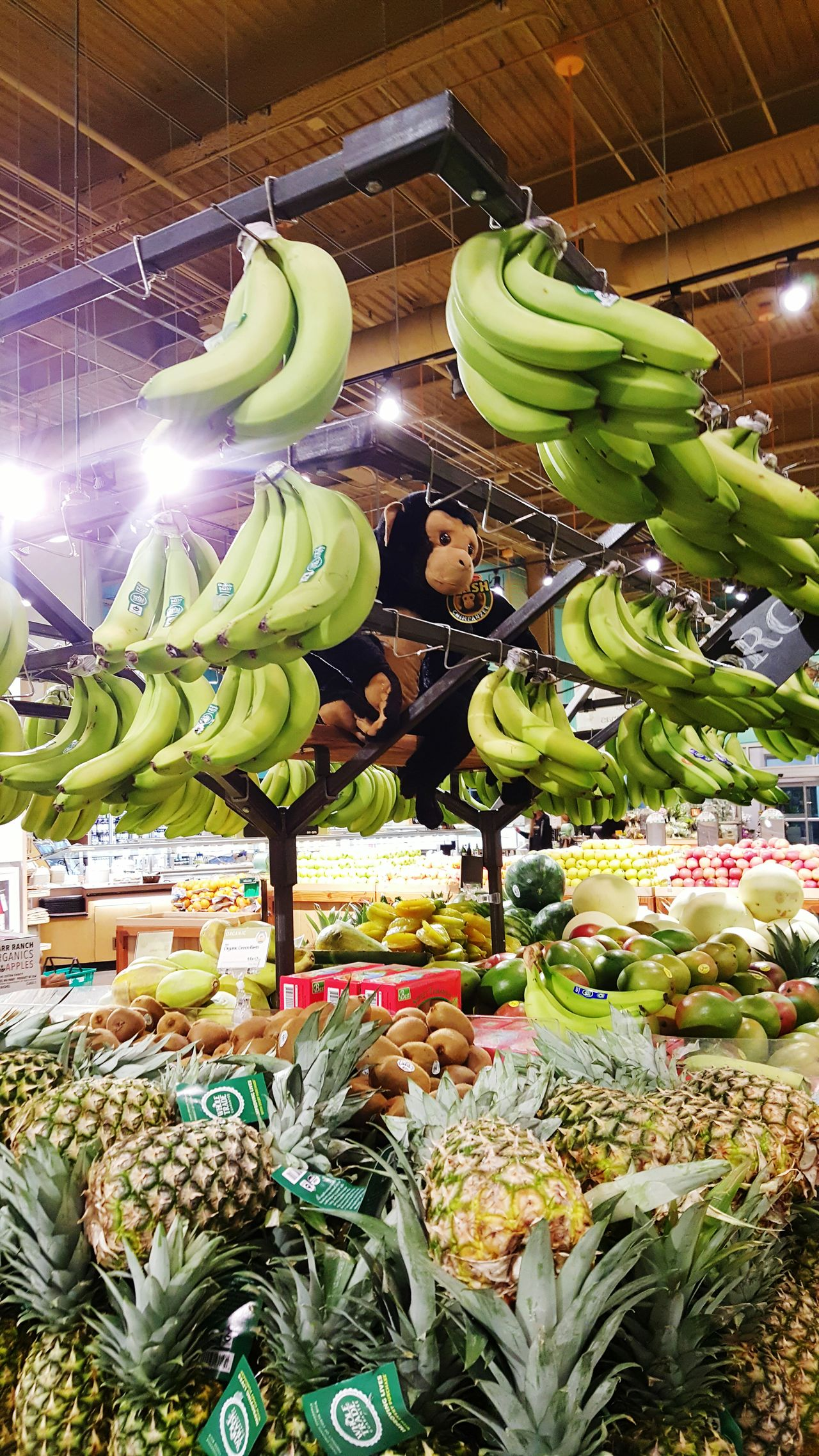 Everything In Its Place Stacked Lined Up In A Row Organic Lovers Dream Organic Food Fresh Food Foodphotography Fruits Going Bananas Monkeying Around Organization Is The Key To Happiness And Longevity .