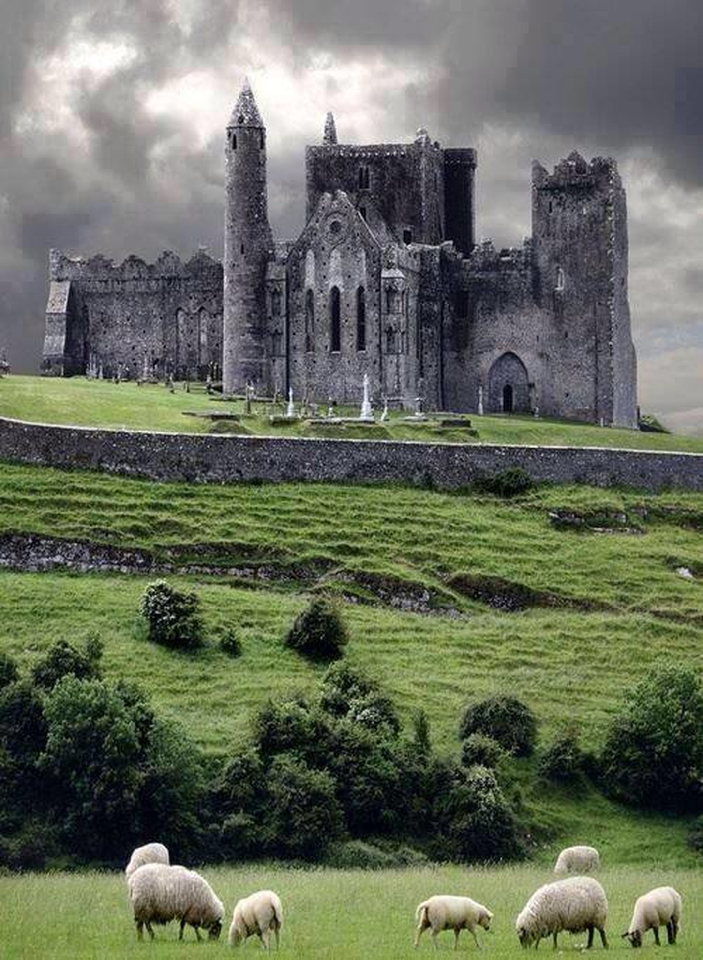architecture, built structure, building exterior, grass, sky, history, cloud - sky, animal themes, famous place, green color, the past, field, travel destinations, old ruin, cloud, castle, landscape, tourism, cloudy, tree