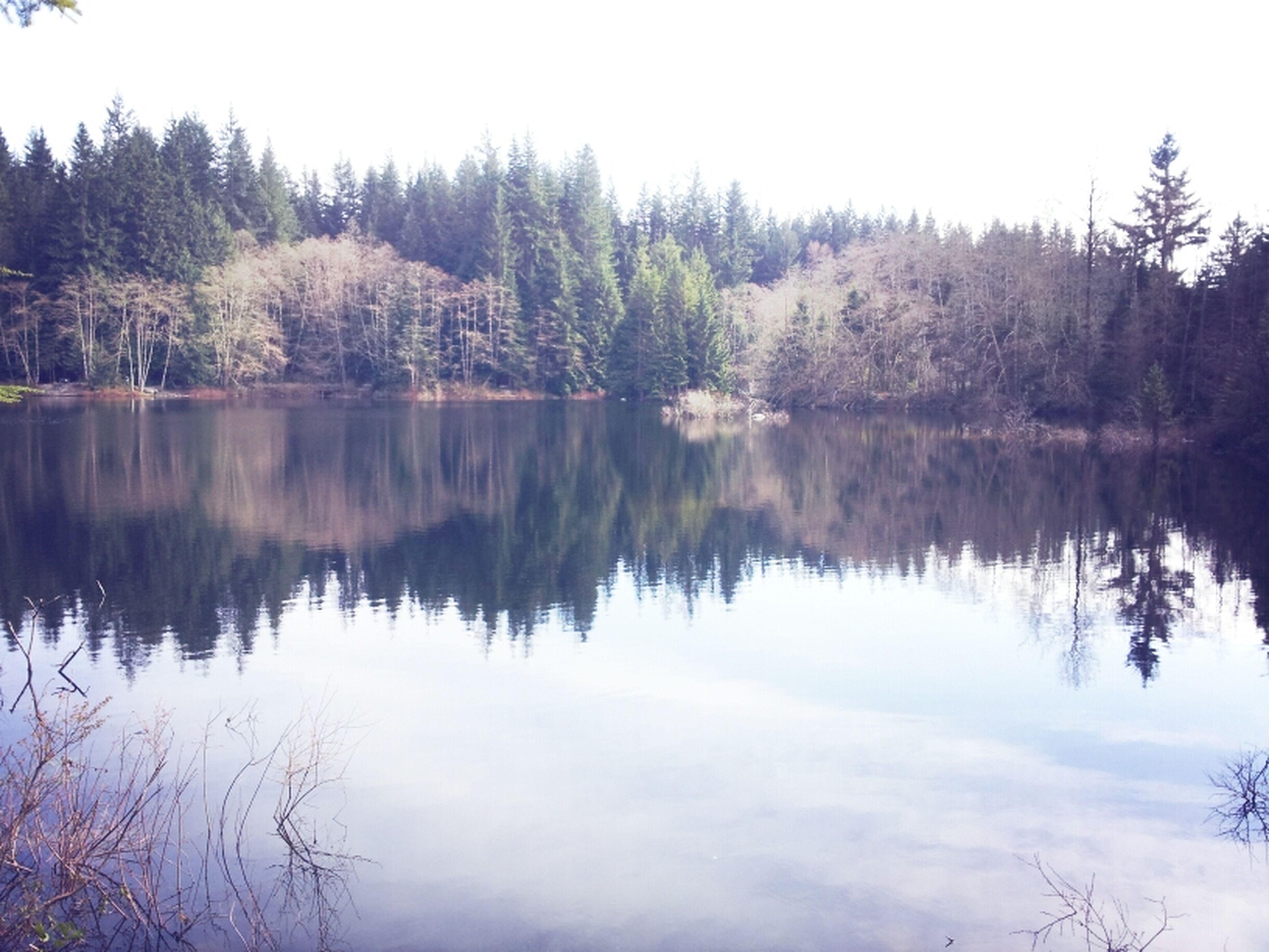Rice Lake  Walking